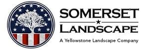New Somerset Logo-Medium-YL-tag
