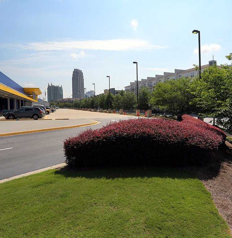 commercial property parking lot with shrubs and trees