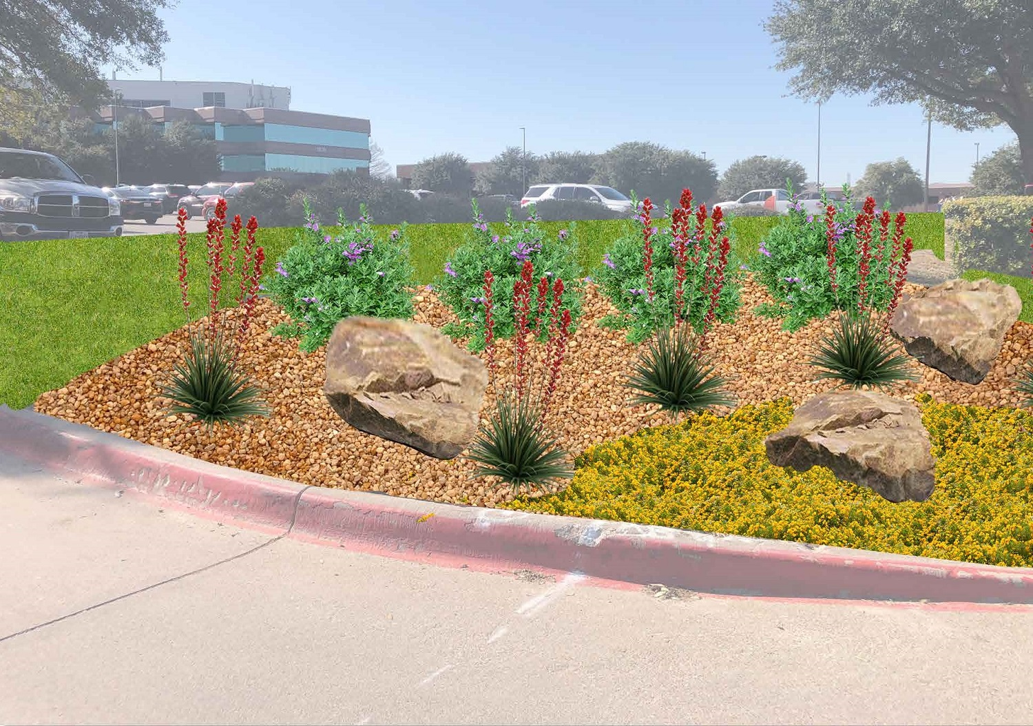 drought tolerant plants on commercial property landscape in Dallas