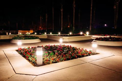 landscape lighting landscaping on college campus