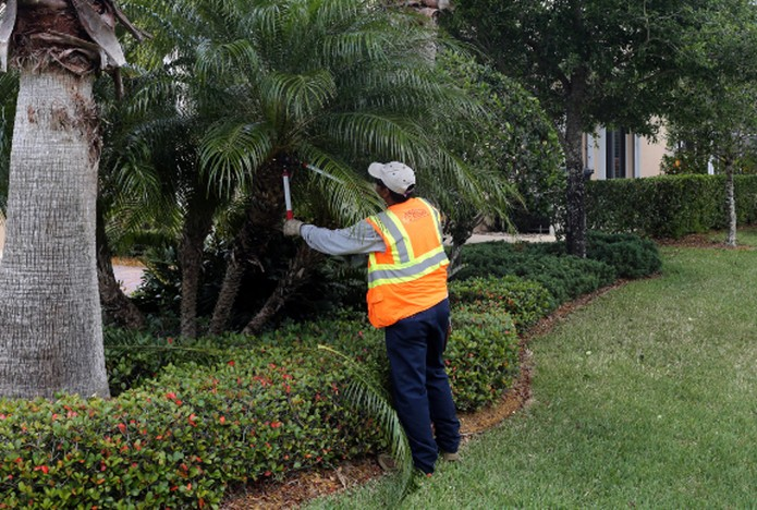 landscape maintenance on HOA property