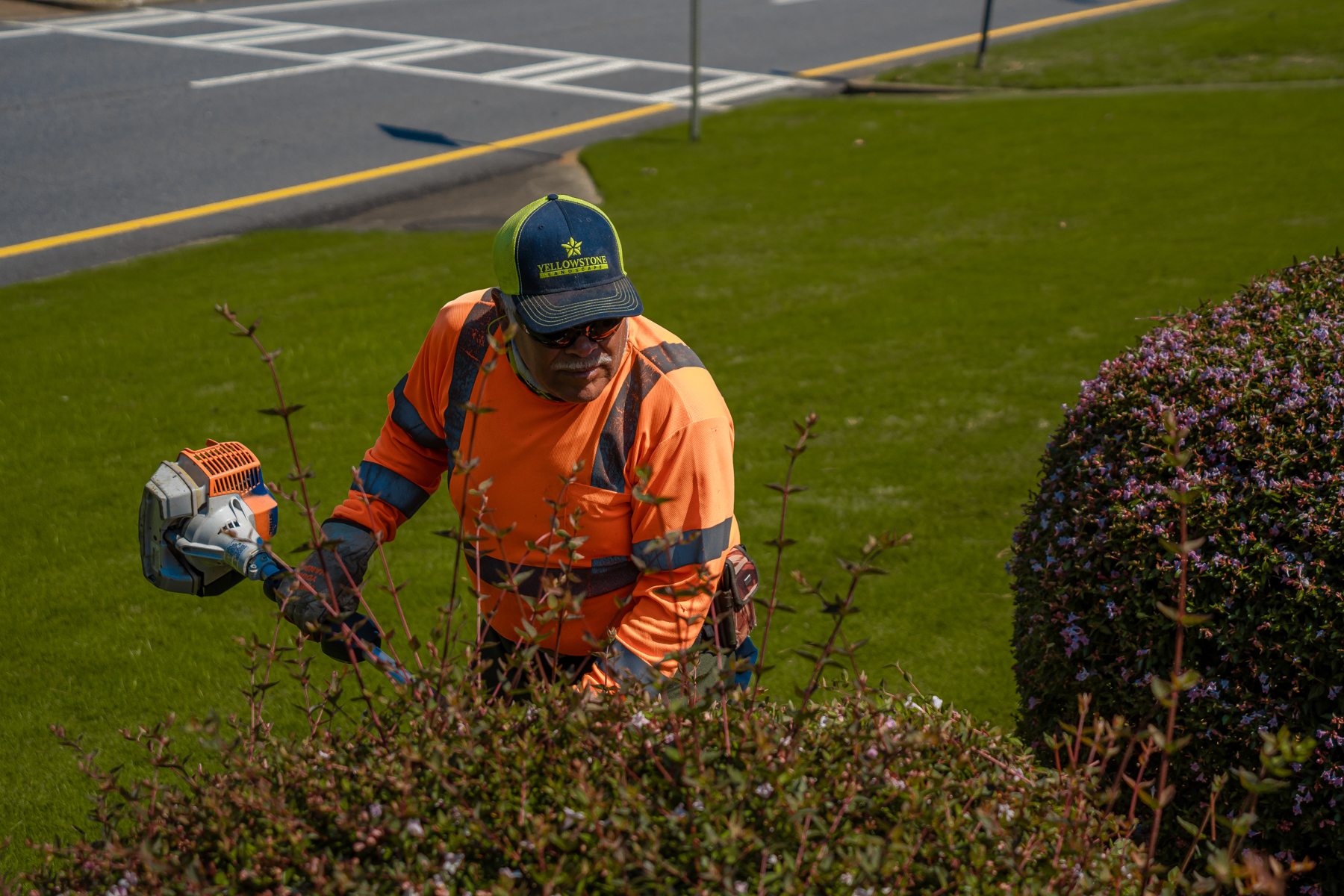 Lawn care technician pruning shrubs