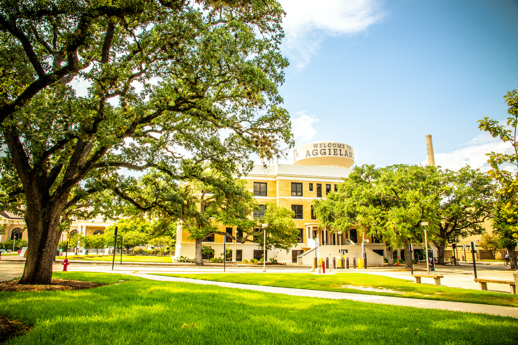 university landscape with landscaping services in Florida