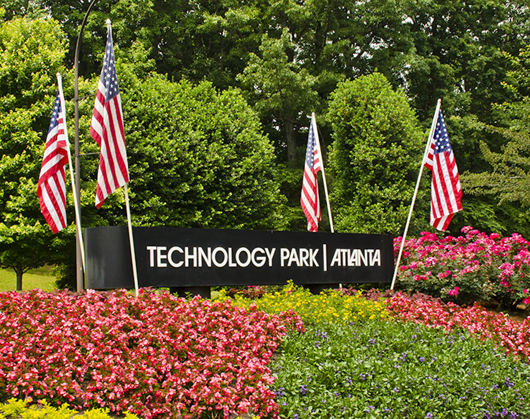 Technology Park Atlanta Landscape