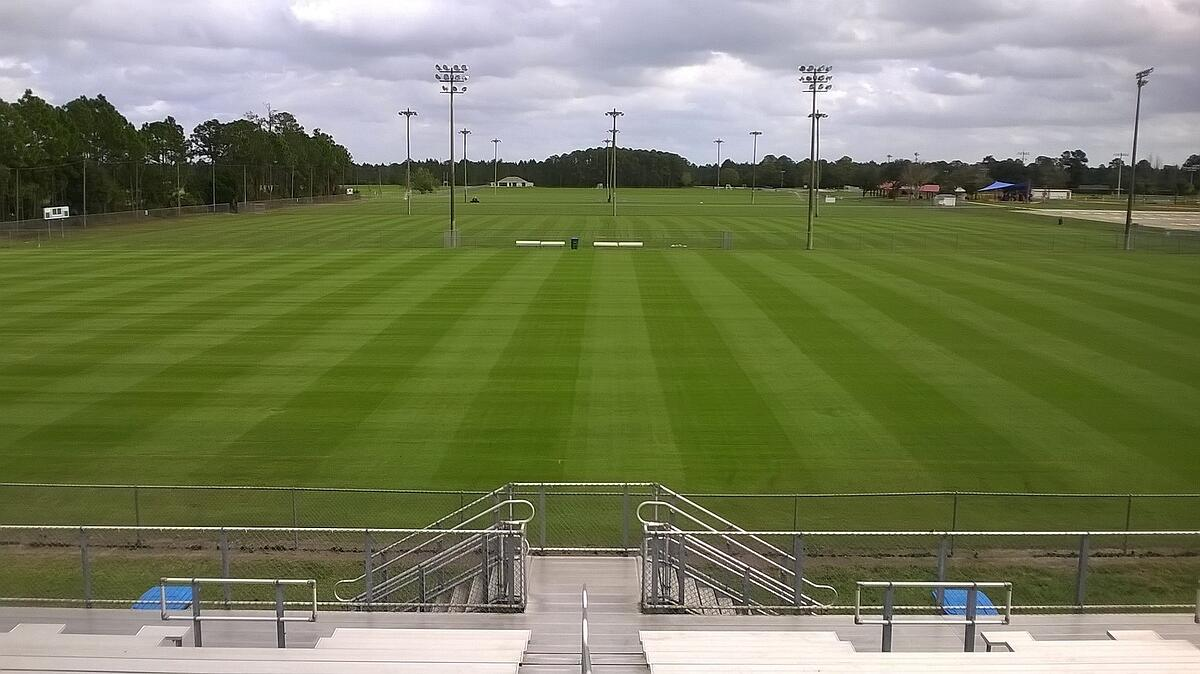 natural turf athletic field