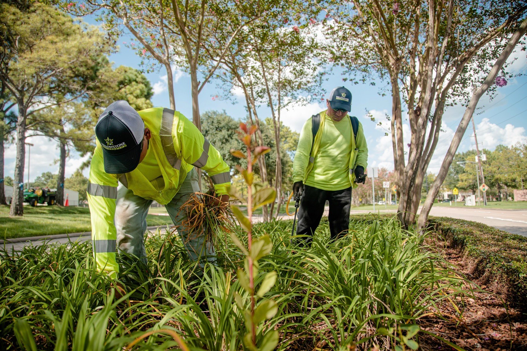 commercial landscaping crew performing maintenance
