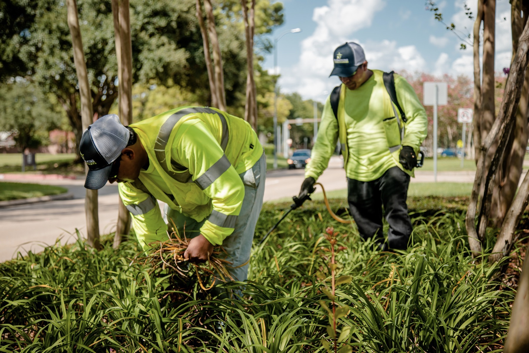 commercial landscaping crew maintaining landscape