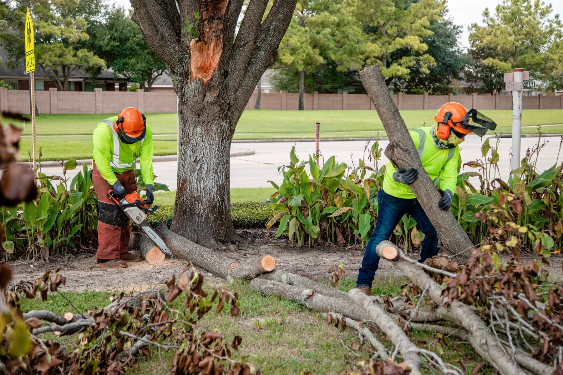 commercial tree service crew cleaning up a broken limb