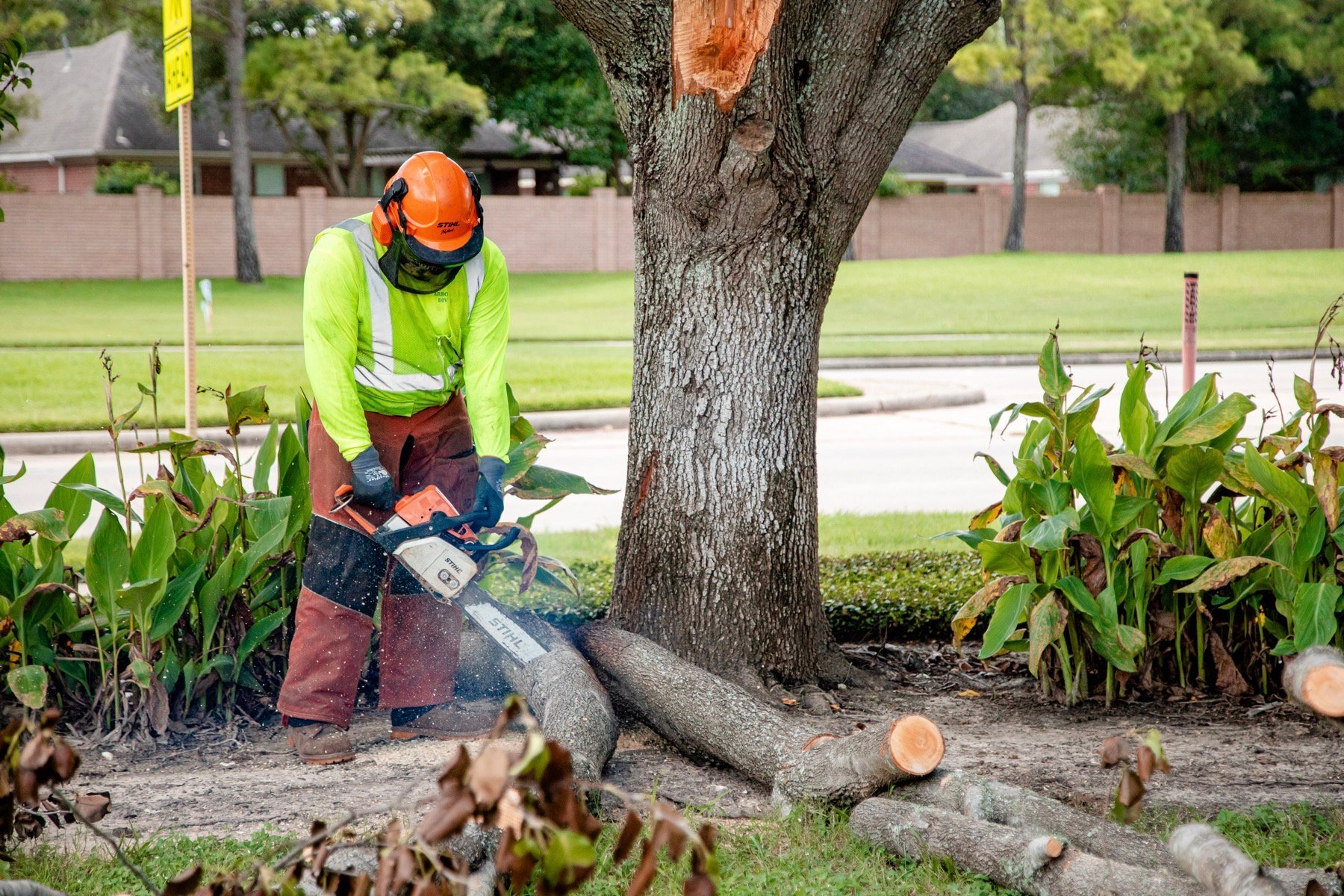 commercial tree service crew using a chainsaw to cut up fallen tree limbs