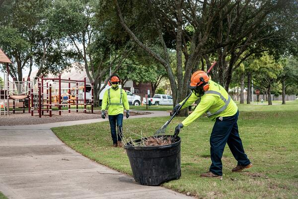 commercial tree service crew clean up 1