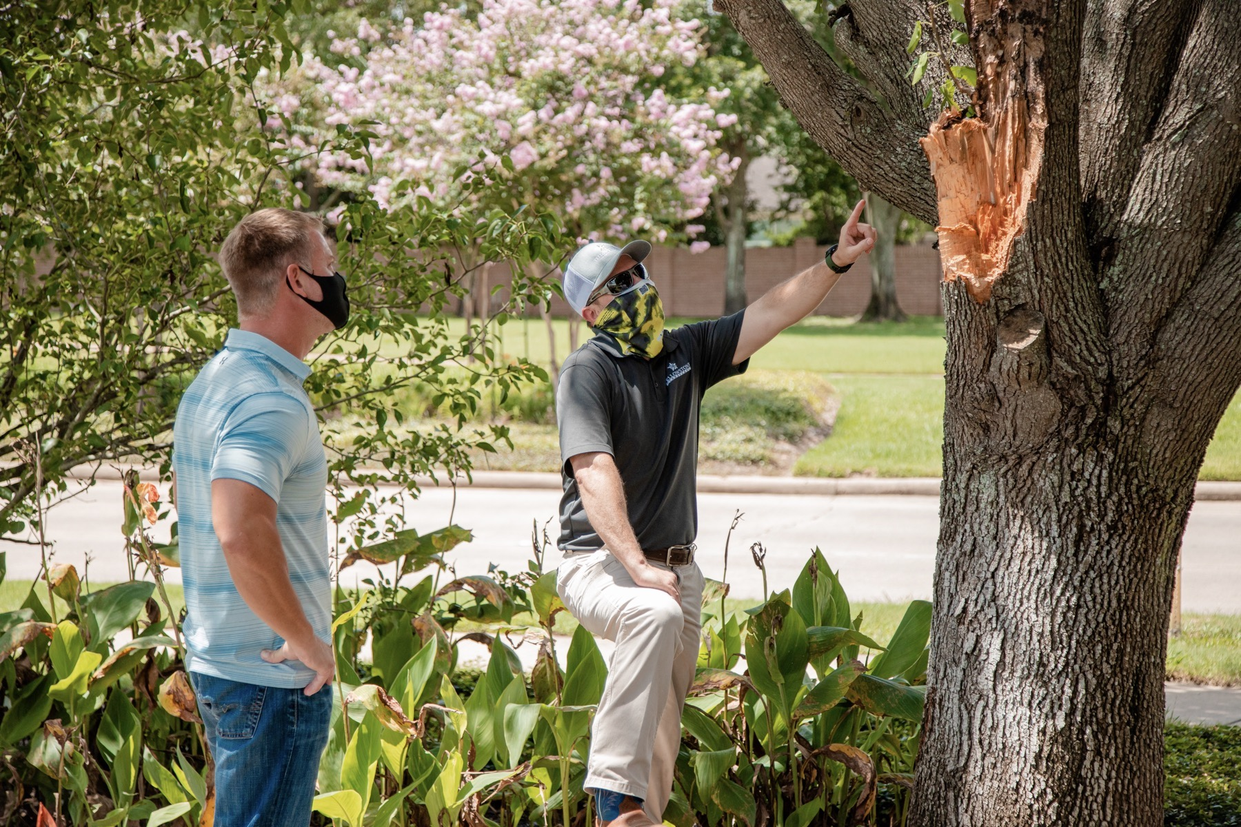 Commercial tree service inspection with a customer