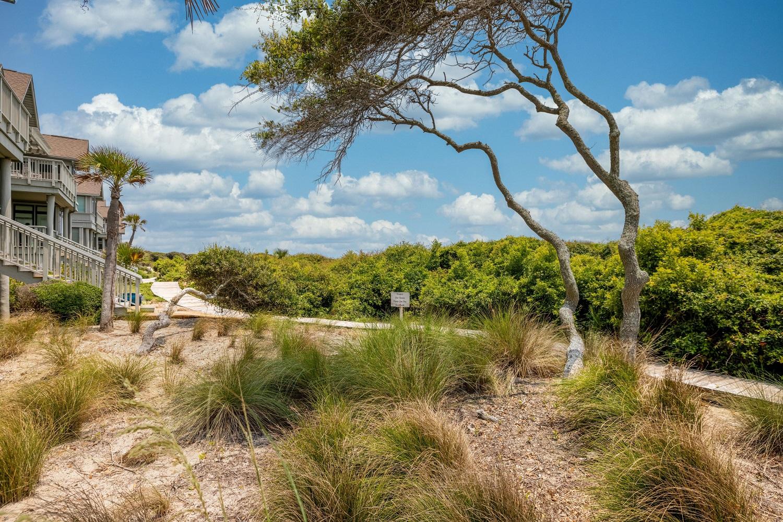 landscaping near beach