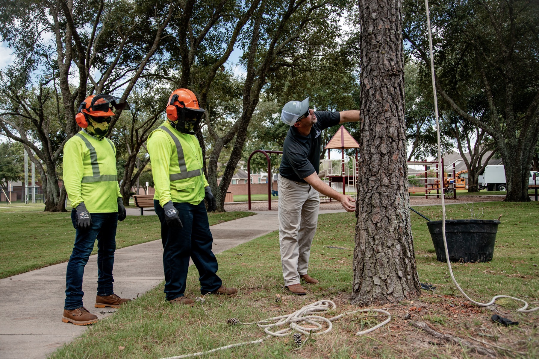 Tree service crew prepping for a job